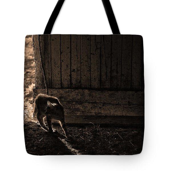 Barn Cat Tote Bag by Theresa Tahara