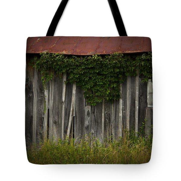 barn eyes Tote Bag by Shane Holsclaw