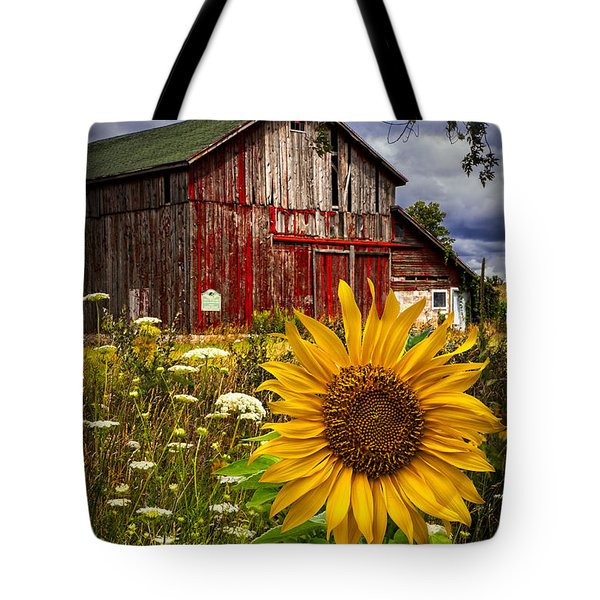 Barn Meadow Flowers Tote Bag by Debra and Dave Vanderlaan