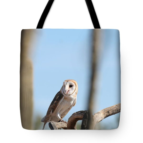 barn owl Tote Bag by David S Reynolds