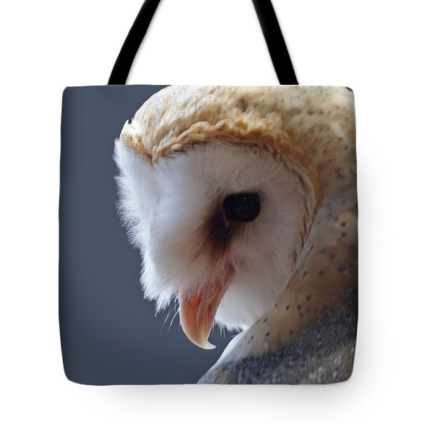 Barn Owl Dry Brushed Tote Bag by Ernie Echols