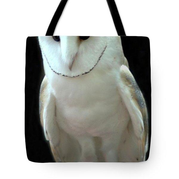 Barn Owl. Tote Bag by Kathleen Struckle