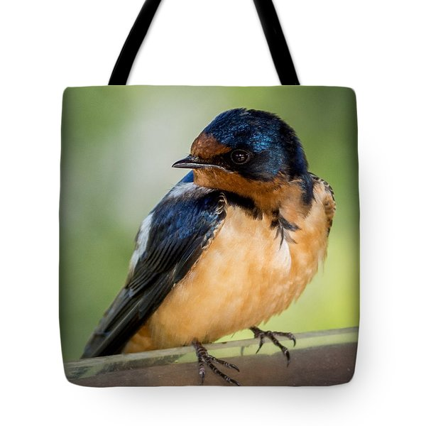 Barn Swallow Tote Bag by Ernie Echols