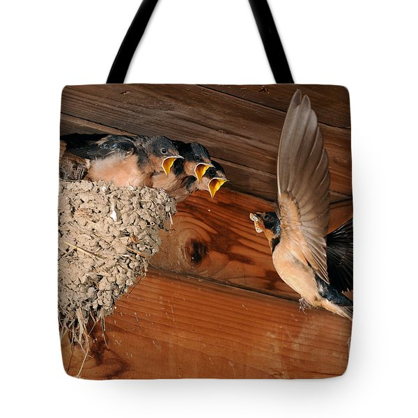 Barn Swallow Nest Tote Bag by Scott Linstead