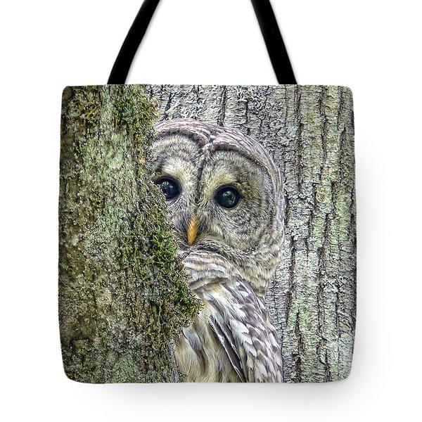 Barred Owl Peek A Boo Tote Bag by Jennie Marie Schell