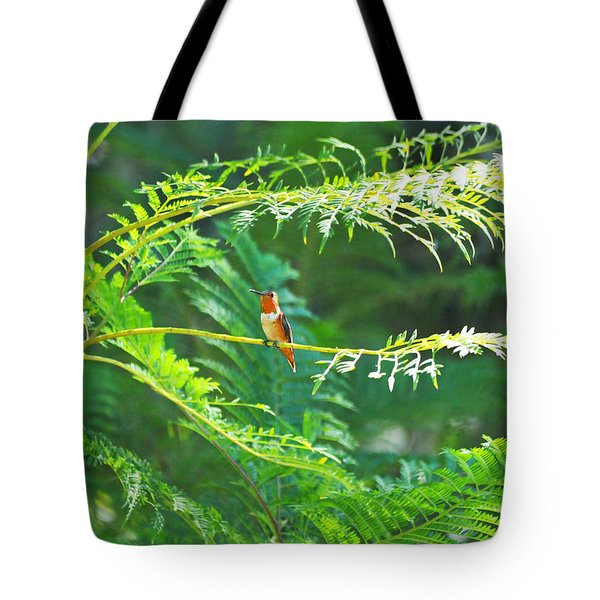 Basking In The Morning Light Tote Bag by Lynn Bauer