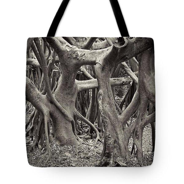 Baynan Roots Tote Bag by Rudy Umans