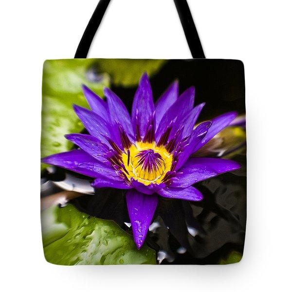 Bayou Beauty Tote Bag by Scott Pellegrin
