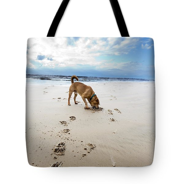 Beach Dog Tote Bag by Eldad Carin