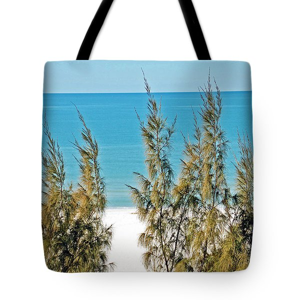 Beach Front View Tote Bag by Aimee L Maher Photography and Art Visit ALMGallerydotcom