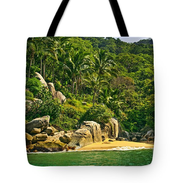 Beach In Mexico Tote Bag by Elena Elisseeva