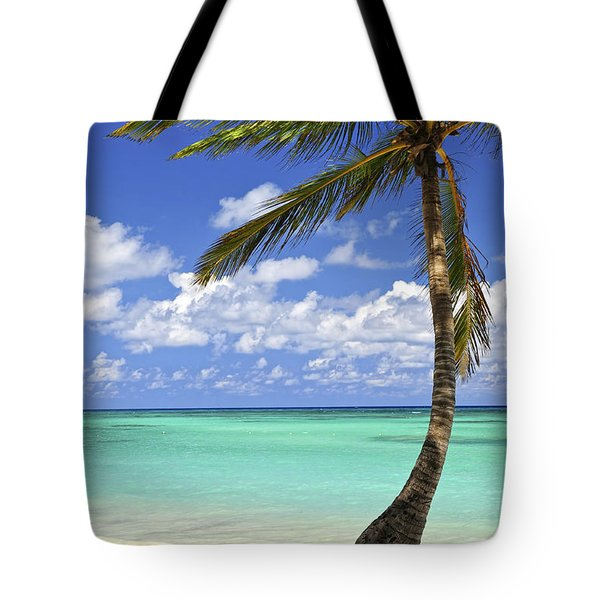 Beach of a tropical island Tote Bag by Elena Elisseeva