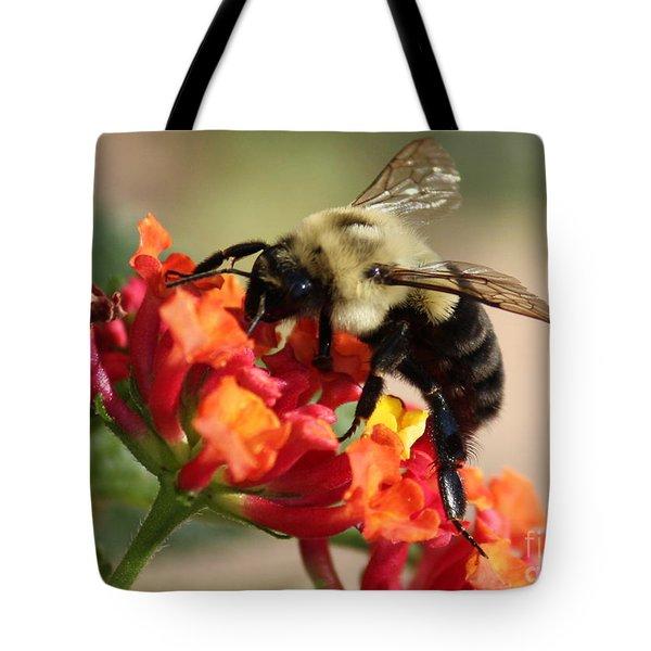 Beautiful Bee Tote Bag by Carol Groenen