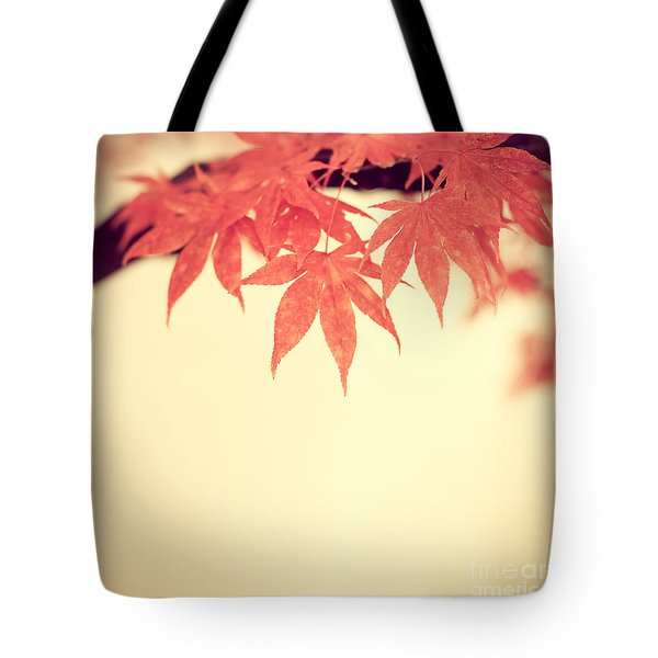 Beautiful Fall Tote Bag by Hannes Cmarits