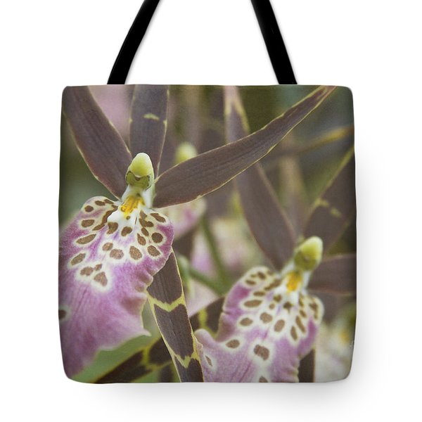 Beautiful Mtssa. Shelob 'tolkien' - Orchids - Mericlone  Tote Bag by Sharon Mau
