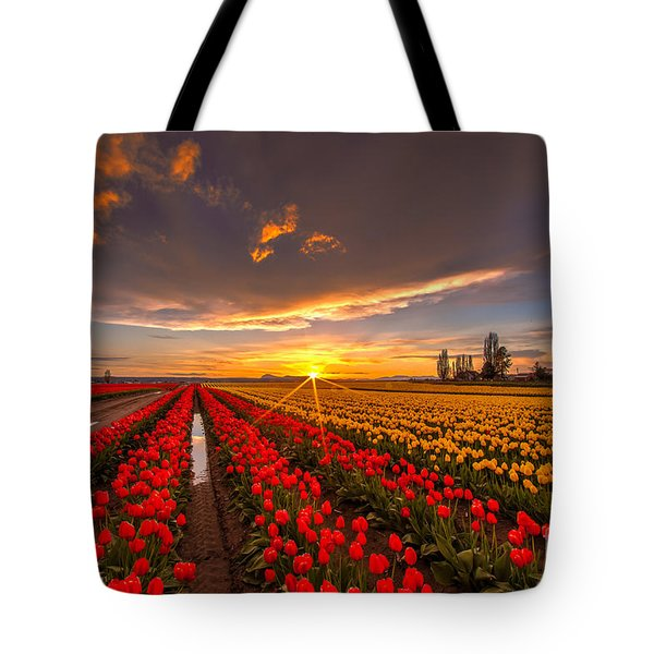 Beautiful Tulip Field Sunset Tote Bag by Mike Reid