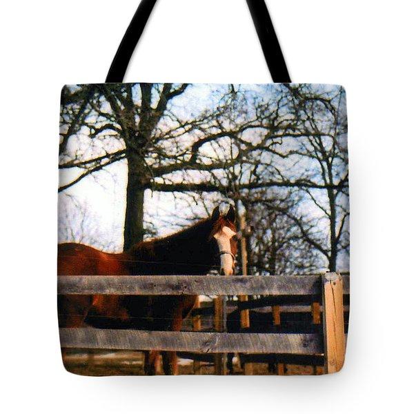 Beauty Waiting Tote Bag by Kay Novy