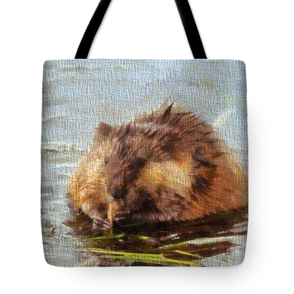 Beaver Portrait On Canvas Tote Bag by Dan Sproul