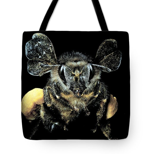 Bee Loaded With Pollen Tote Bag by Darwin Dale