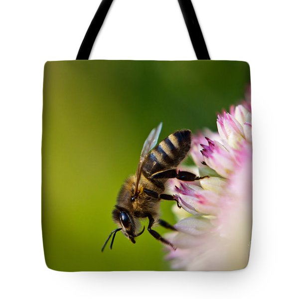 Bee Sitting On A Flower Tote Bag by John Wadleigh