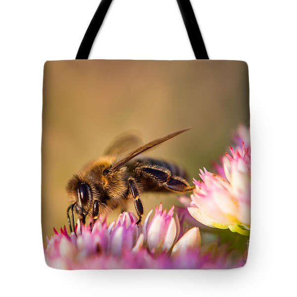 Bee Sitting On Flower Tote Bag by John Wadleigh