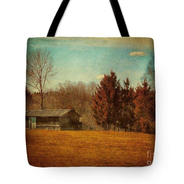 Behind The Village Tote Bag by Jutta Maria Pusl