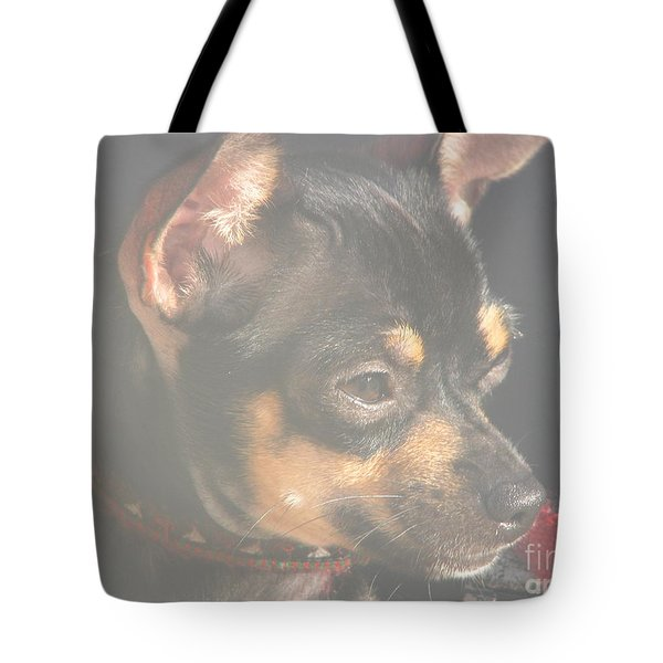 Bella Tote Bag by Greg Patzer