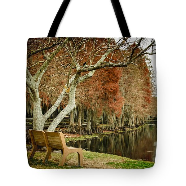 Bench With A View Tote Bag by Carolyn Marshall