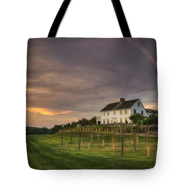 Beneath An Evening Sky Tote Bag by Evelina Kremsdorf