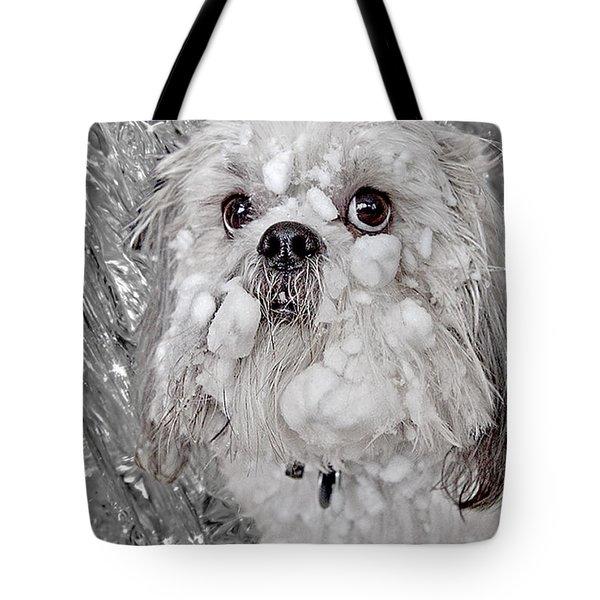 Benji Tote Bag by David Kehrli