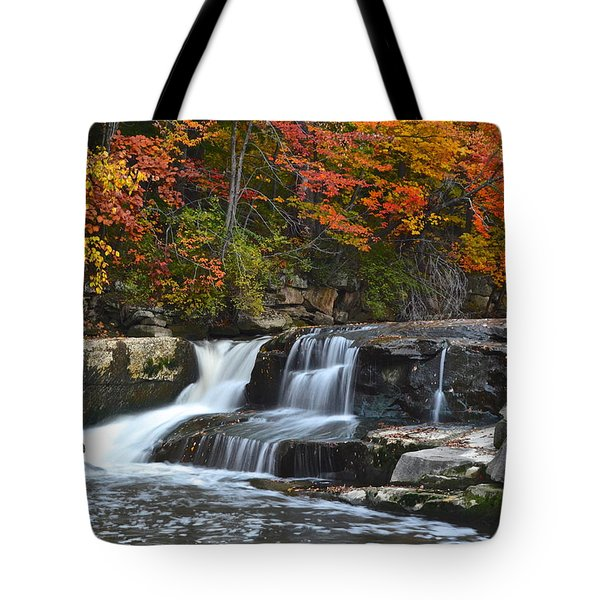 Berea Beauty Tote Bag by Frozen in Time Fine Art Photography
