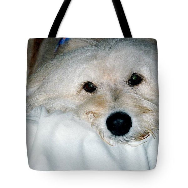 Bessie Eyes Tote Bag by Randi Shenkman