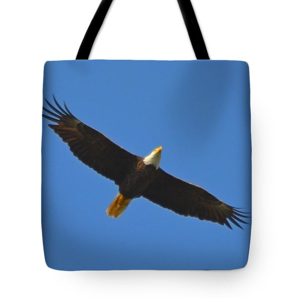 Best Soaring Bald Eagle Tote Bag by Jeff at JSJ Photography