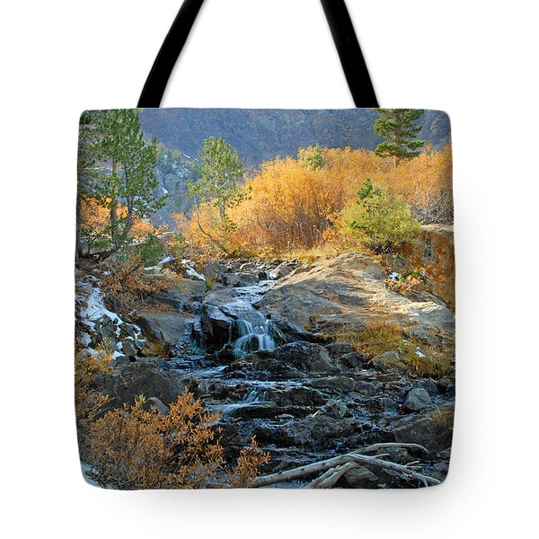 Between The Virginias Tote Bag by Lynn Bauer