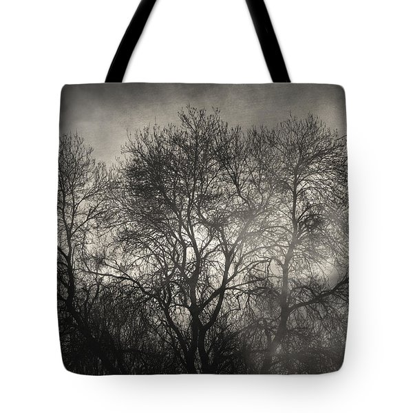 Beyond The Morning Tote Bag by Taylan Soyturk