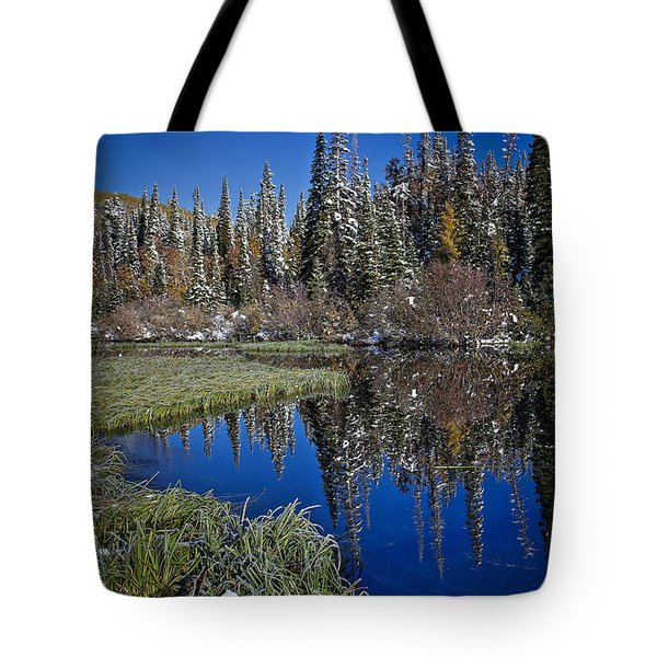 Big Cottonwood Canyon  Tote Bag by Richard Cheski