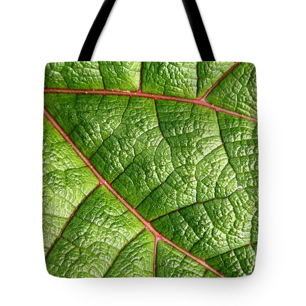 Big Green Leaf 5D22460 Tote Bag by Wingsdomain Art and Photography