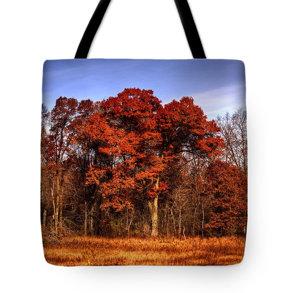 Big Red Tote Bag by Thomas Young