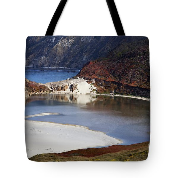 Big Sur Coastal Pond Tote Bag by Jenna Szerlag