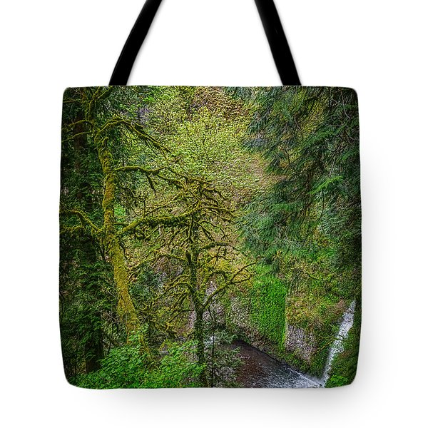 Bigfoot Country Tote Bag by Jon Burch Photography