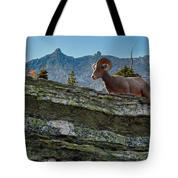 Bighorn Tote Bag by Sebastian Musial