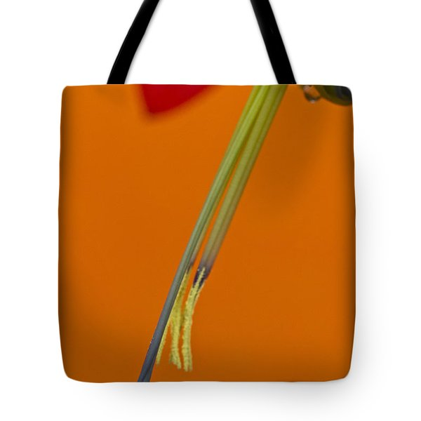 Bilbergia  Windii Detail Tote Bag by Heiko Koehrer-Wagner