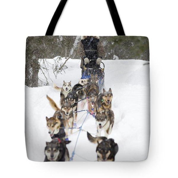 Bill Pinkham On The Trail In A Heavy Tote Bag by Jeff Schultz