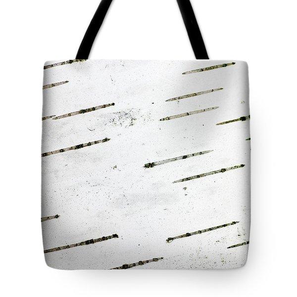 Birch Bark Tote Bag by Steven Ralser
