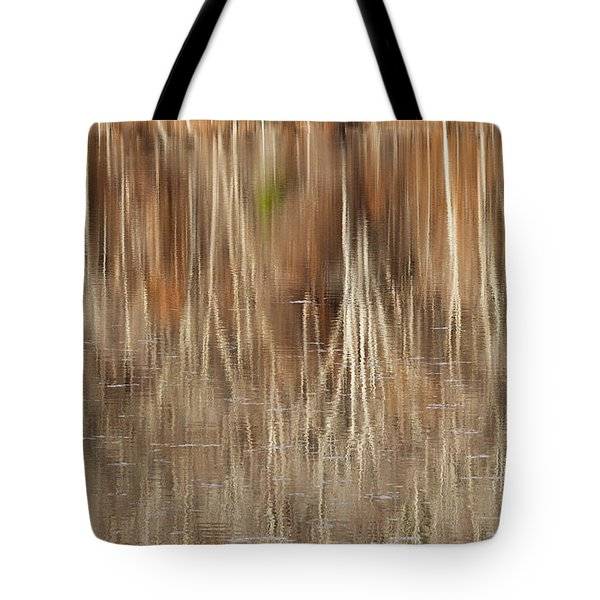 Birch Tree Reflections Tote Bag by Alan L Graham