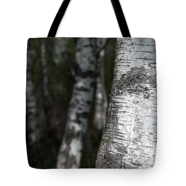 birches II Tote Bag by Hannes Cmarits