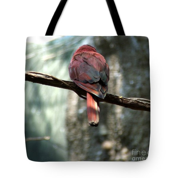 Bird Tote Bag by Andrea Anderegg