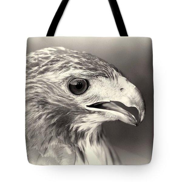 Bird Of Prey Tote Bag by Dan Sproul