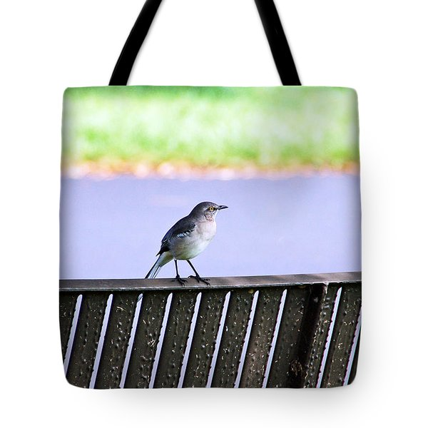 Bird On Bench Tote Bag by Aimee L Maher Photography and Art Visit ALMGallerydotcom