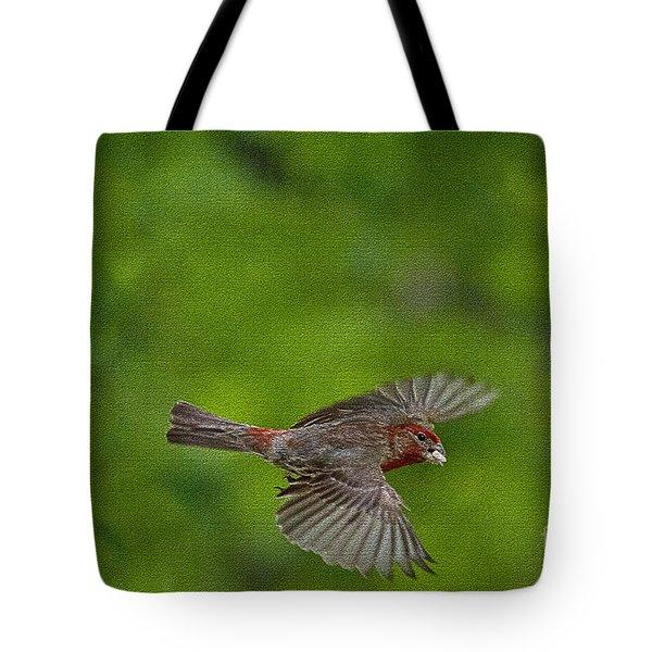Bird Soaring With Food In Beak Tote Bag by Dan Friend